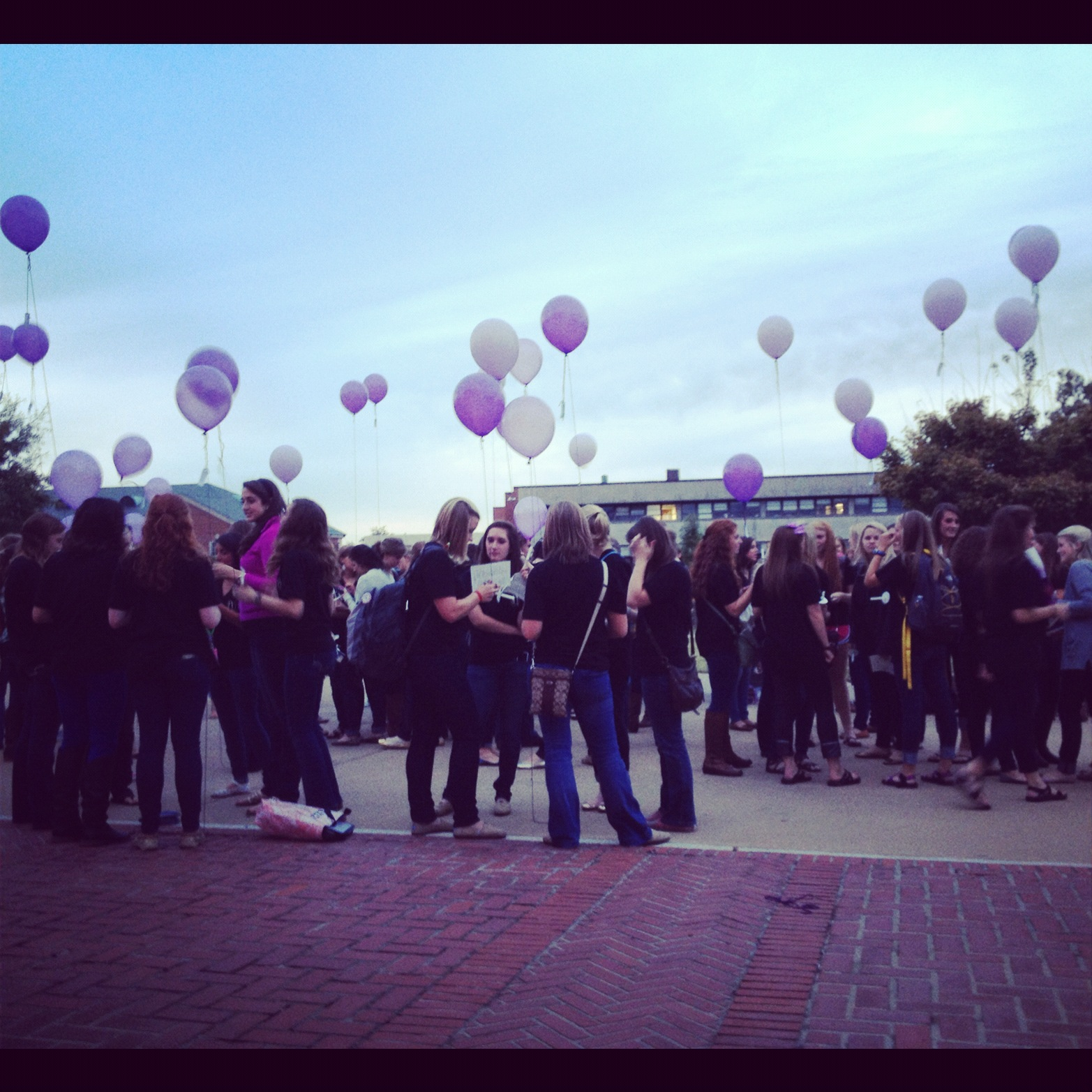 Balloon Release for DVAM