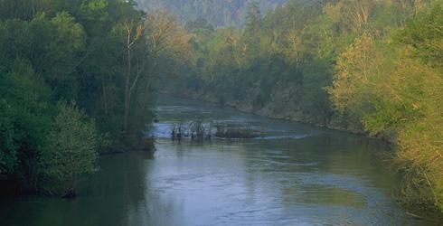 Cahaba River