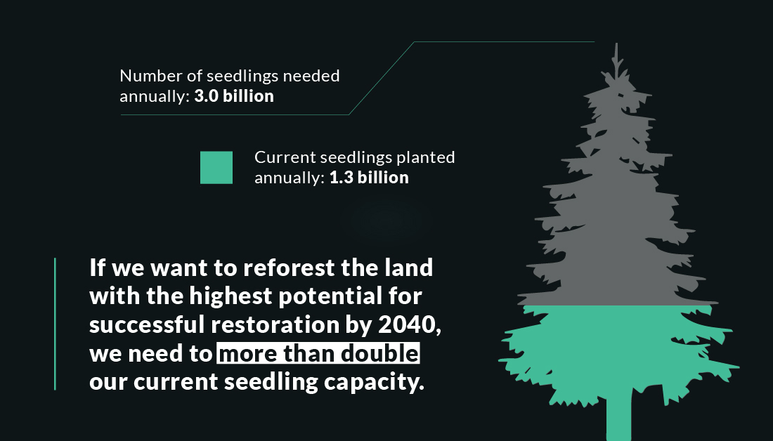 Graphic with tree image: Number of seedlings needed annually: 3.0 billion; current seedlings planted annually: 1.3 billion