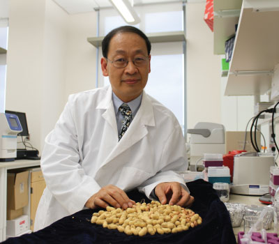 Dr. Peter Chen in his lab