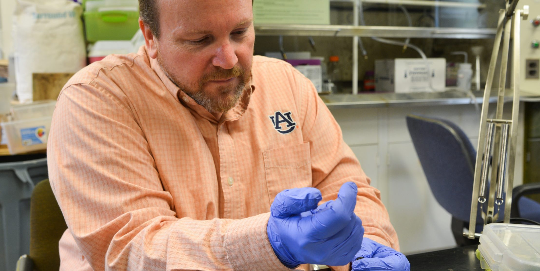 David Held working in laboratory