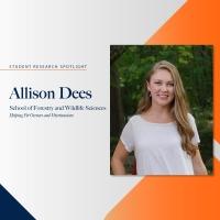 Allison Dees student research spotlight